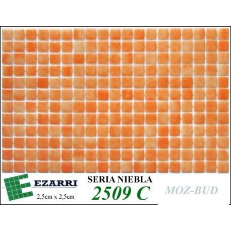 EZARRI 2509-C